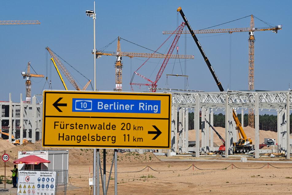 In Grünheide bei Berlin soll die neue Tesla-Elektrofabrik entstehen.