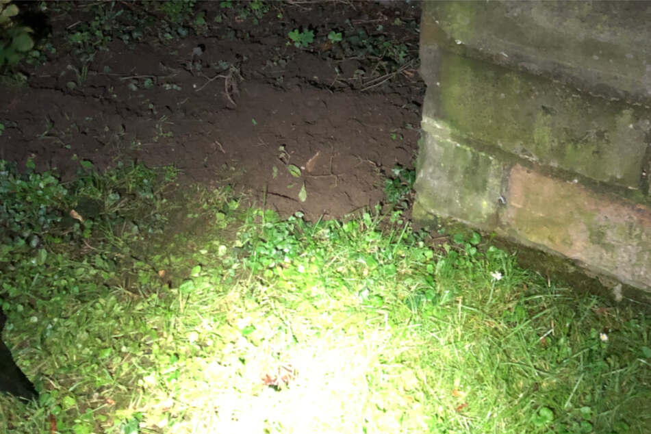 In der Nacht auf Montag vergrub eine ältere Frau einen toten Igel vor der Kirche in Wolmirstedt.