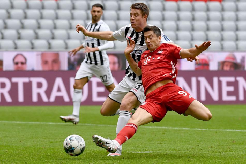 Freiburgs Dominique Heintz (M.) und Münchens Robert Lewandowski (r.) kämpfen um den Ball.