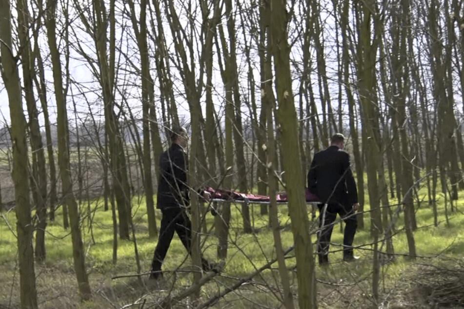 Mitarbeiter eines Bestattungsunternehmen gehen mit einer Leichentrage in ein Wäldchen.