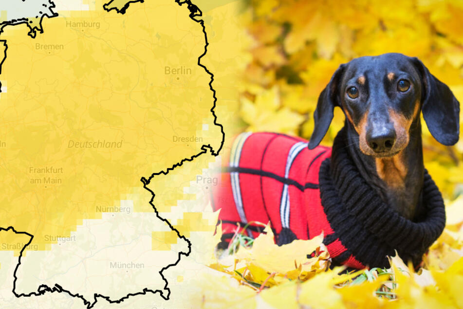 Wetter in Deutschland: Der November-Anfang wird ungewöhnlich mild!