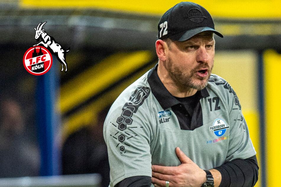 Trainer-Frage beim 1. FC Köln weiter offen: ER soll der Wunschkandidat sein