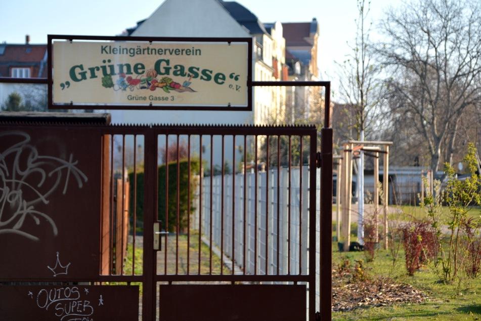 """Hans-Dieter Speike ist Besitzer der abgebrannten Laube - und gleichzeitig Vorsitzender des Kleingartenvereins """"Grüne Gasse""""."""