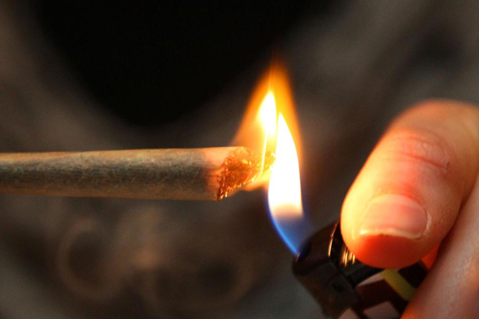 Cannabis zählt in Deutschland zu den beliebtesten Drogen. Die von den griechischen Behörden entdeckte Menge war auch für deutsche Konsumenten bestimmt. (Beispielbild)