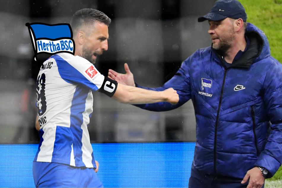 Hertha BSC will nicht den Schalke-Weg gehen: Keine Rückkehr von Ibisevic