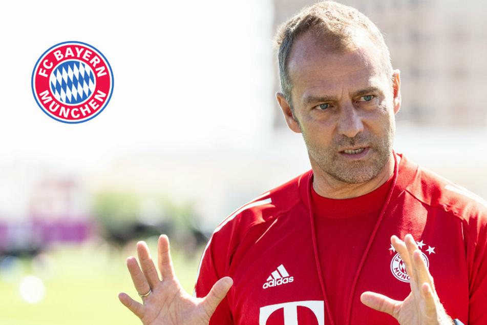 Jeden Cent wert! Dieses Gehalt soll Triple-Coach Hansi Flick beim FC Bayern kassieren