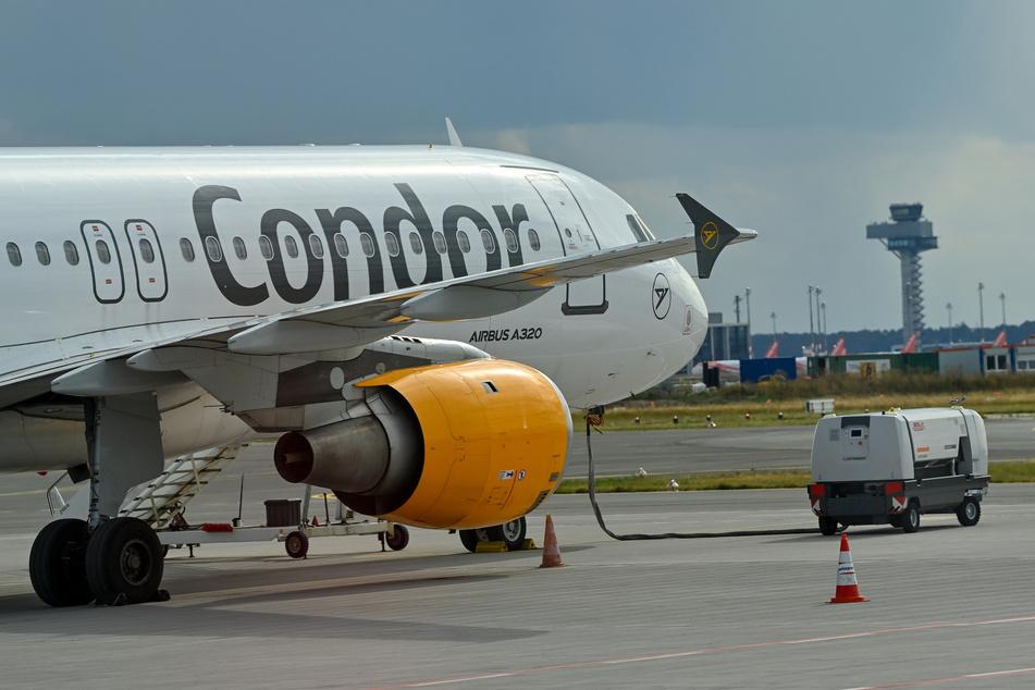 Der Ferienflieger Condor will nach seiner Sanierung im kommenden Sommer ein breites Flug-Programm anbieten.