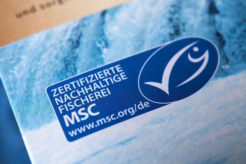 Hering aus dem Nordostatlantik verliert Umweltsiegel MSC