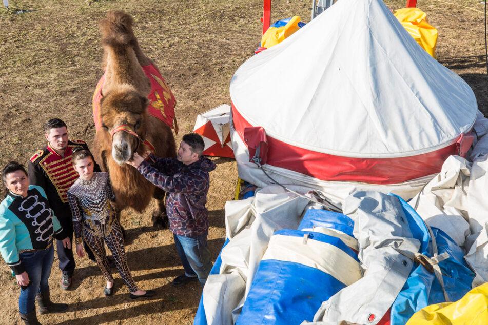 Vorerst bleibt das Zirkus-Zelt der Familie Endres in Klotzsche am Boden.