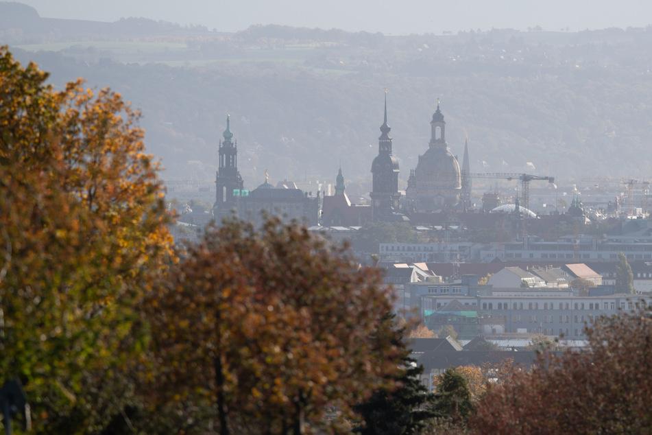Herbstlich gefärbte Bäume vor der Kulisse der Dresdner Altstadt.