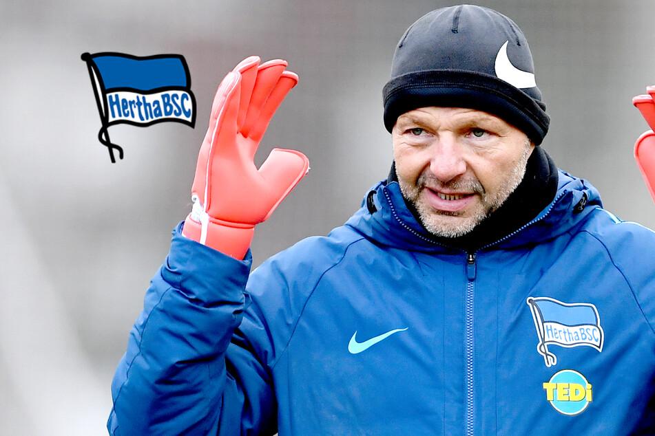 Nach homophoben und fremdenfeindlichen Aussagen: Hertha BSC trennt sich von Zsolt Petry