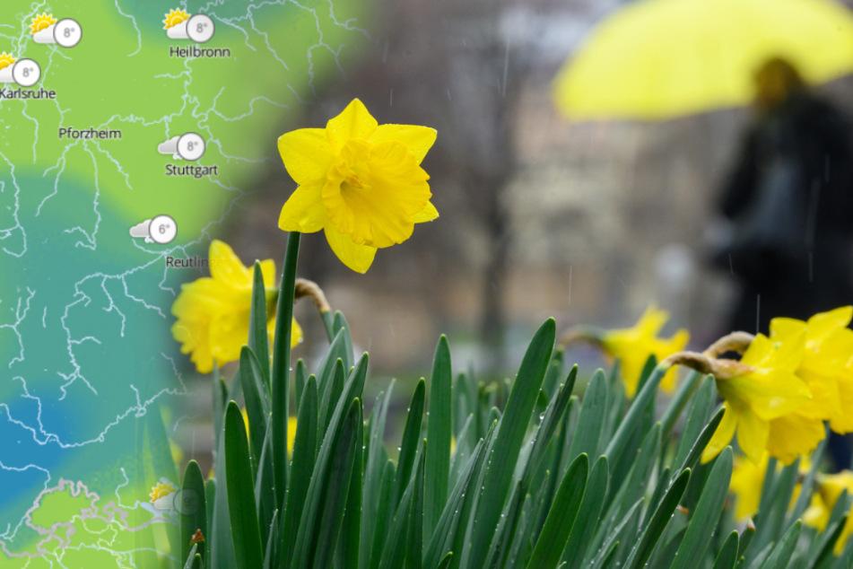 Am Sonntag wird es kühler und kann regnen.