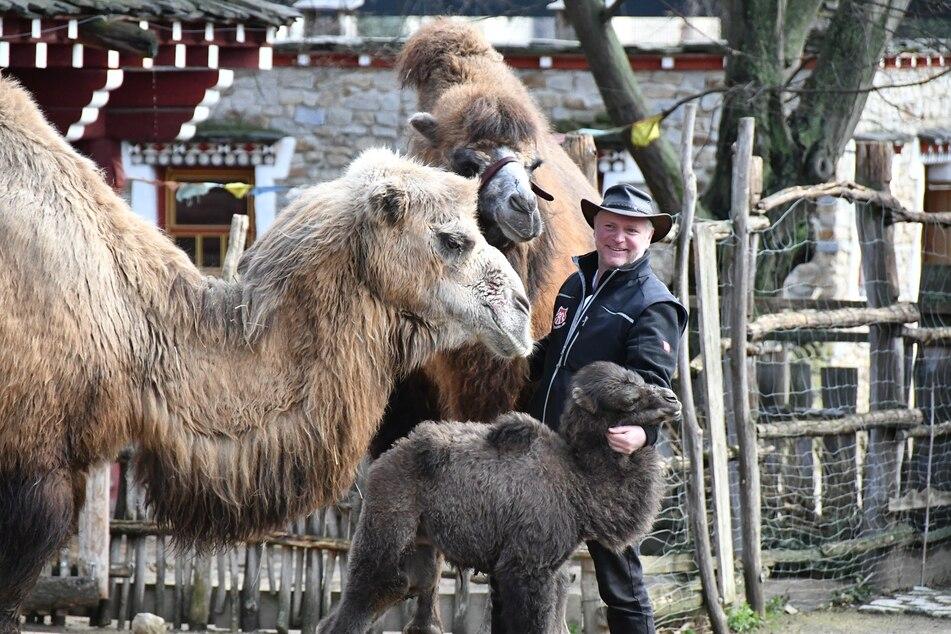 Sven Hammer (51), Direktor des Görlitzer Tierparks, hatte sich mehr Hilfe vom Freistaat erhofft.