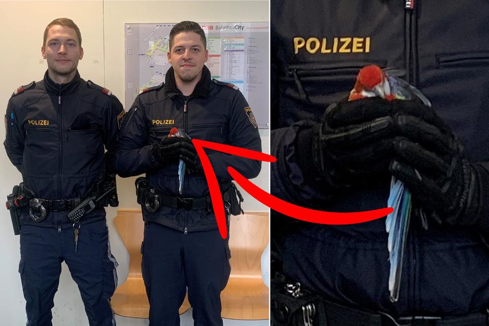 Polizisten legen sich auf die Lauer und fangen flüchtigen Ausreißer
