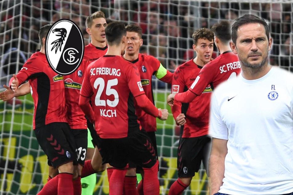 Nationalspieler im Visier! Bedient sich der FC Chelsea beim SC Freiburg?