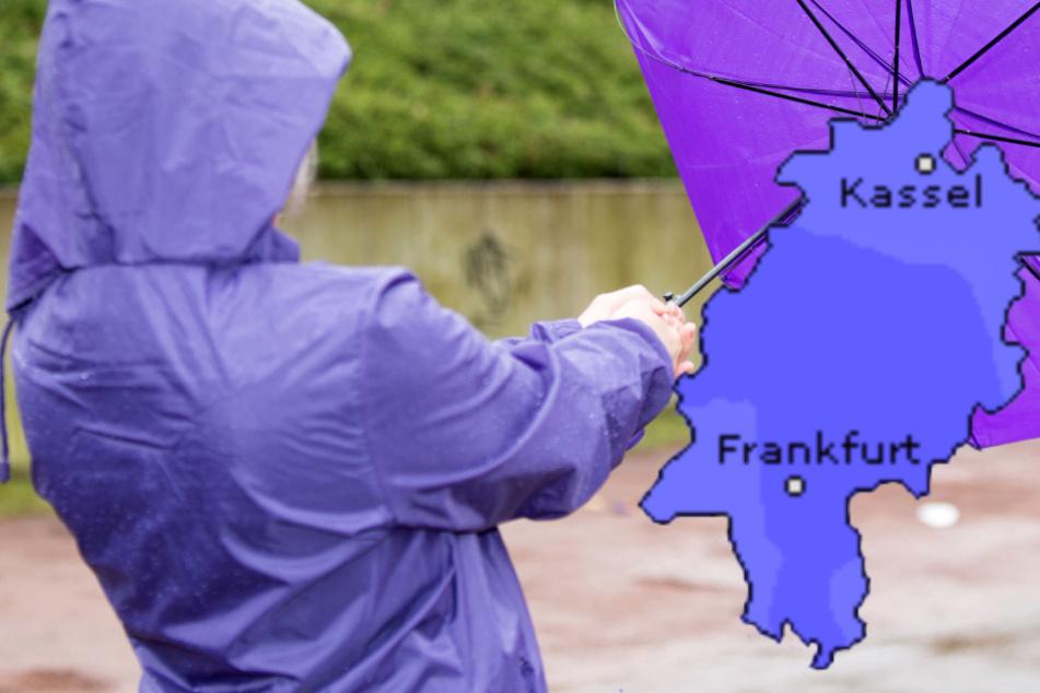 Regen und Sturmböen: Das Wetter in Frankfurt und Hessen