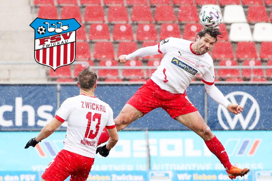 FSV Zwickau verpasst im Ost-Klassiker gegen Halle vierten Sieg in Folge