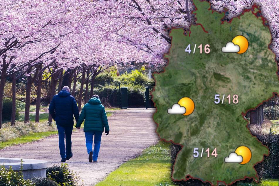 Der Frühling kommt zurück! So schön wird das Wetter in den nächsten Tagen