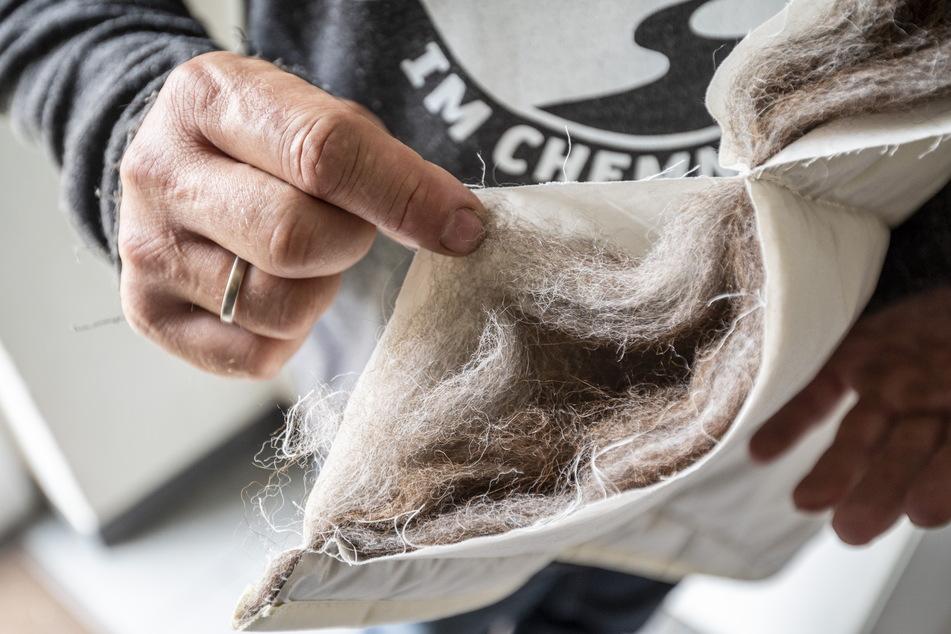 Der letzte Schrei: Decken, die mit Alpakawolle gefüllt sind.