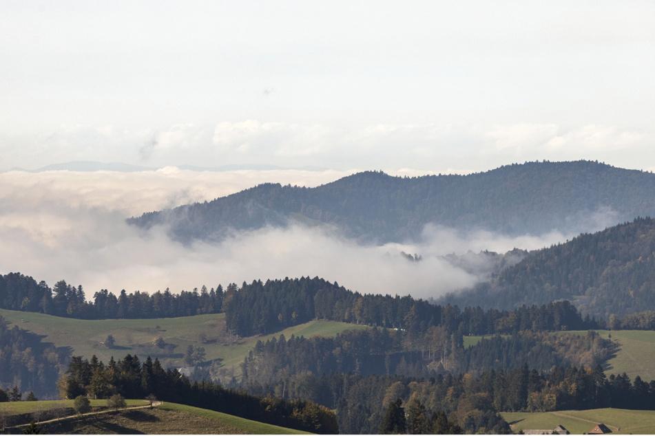 Der Tourismus in der klassischen Ferienregion Hochschwarzwald ist im zweiten Jahr in Folge eingebrochen.