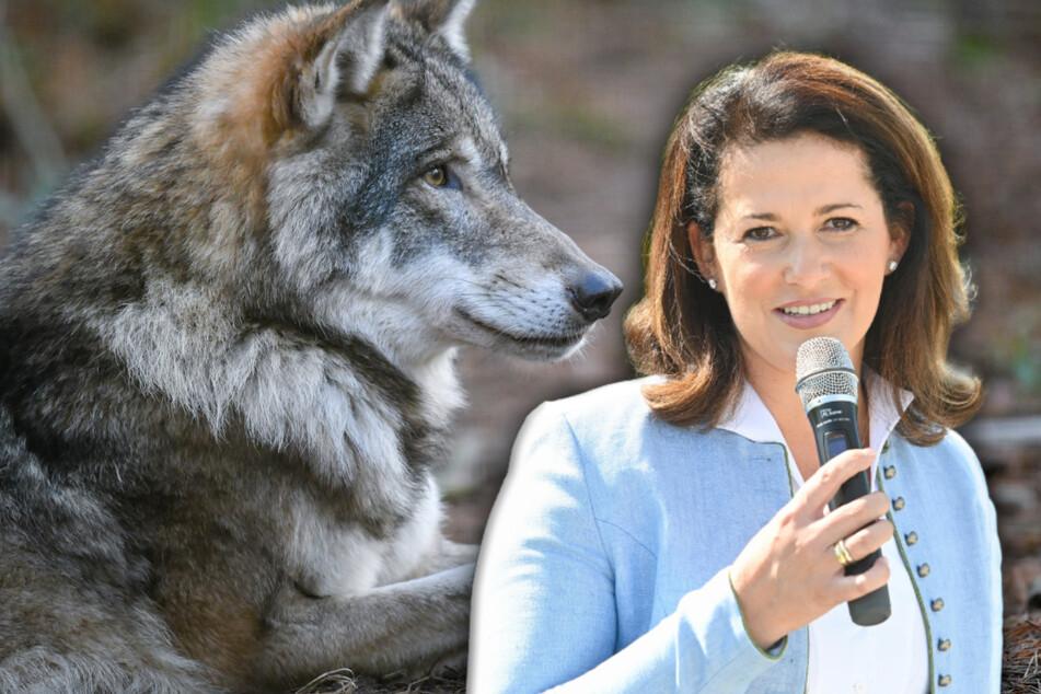 """Agrarministerin Michaela Kaniber (43) stellt sich beim Thema """"Wolf"""" auf die Seite der Bauern."""