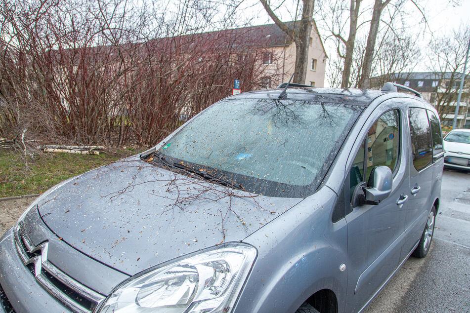 In Chemnitz-Siegmar wurde ein Citroen durch einen Baum beschädigt.