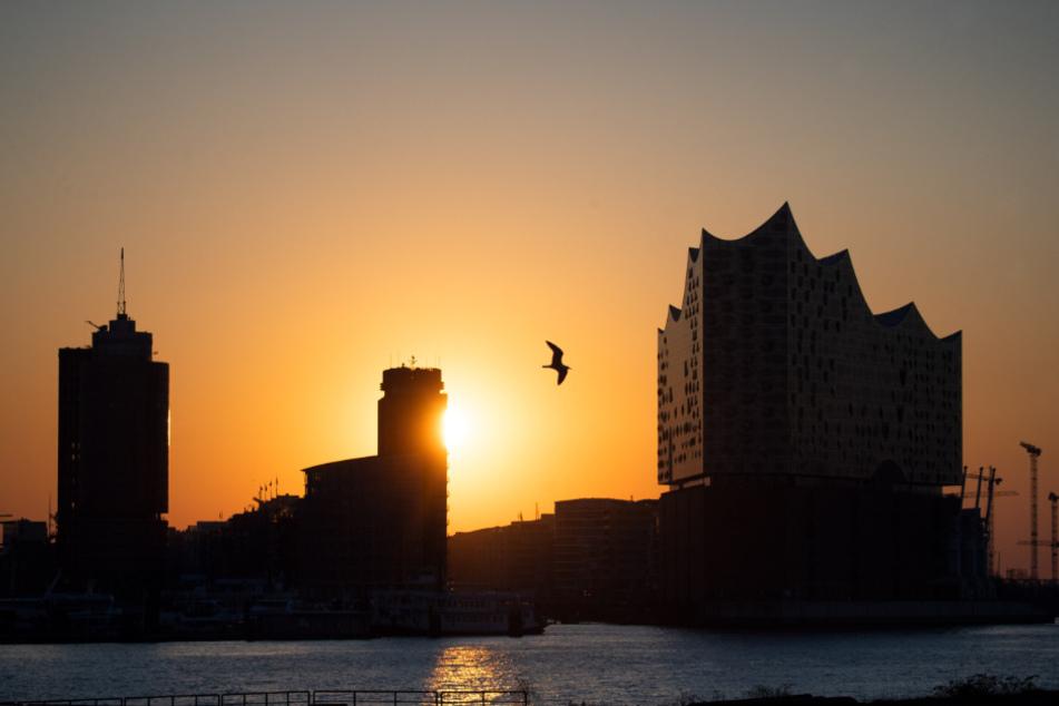 Die Sonne geht über der Hafencity hinter der Elbphilharmonie auf.