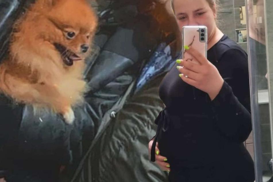 Die Wollnys: Fans besorgt: Gibt Sarafina Wollny nach Geburt ihrer Zwillinge Hund Feivel ab?