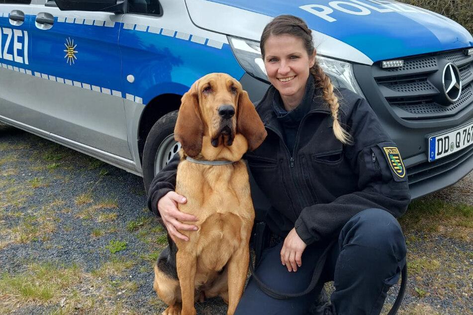 Bloodhound-Hündin Hazel (2) mit ihrer Hundeführerin Christin Fiddecke (32). Das Duo entdeckte am Donnerstag einen Vermissten in Döbeln.