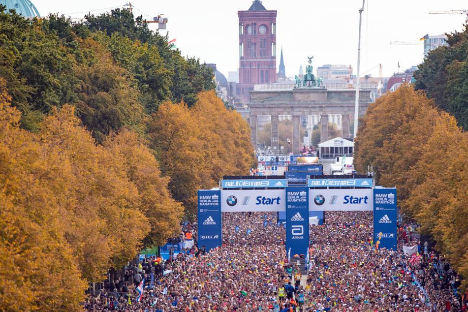 Berlin: Trotz Corona: Rund 25.000 Läufer bei Berlin-Marathon erwartet