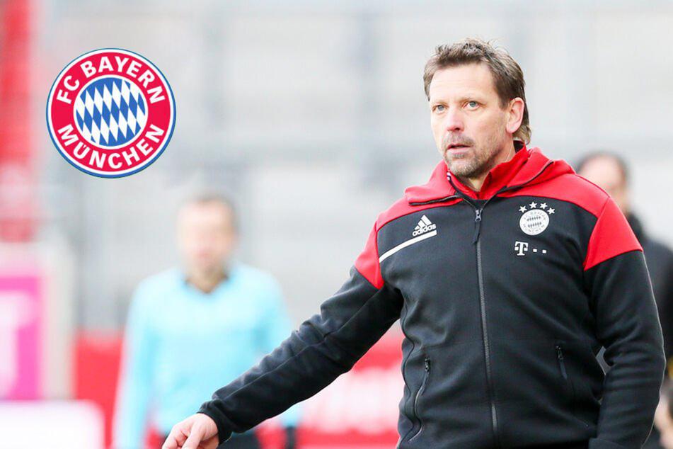 FC Bayern: Amateur-Coach Holger Seitz räumt das Feld, Duo übernimmt