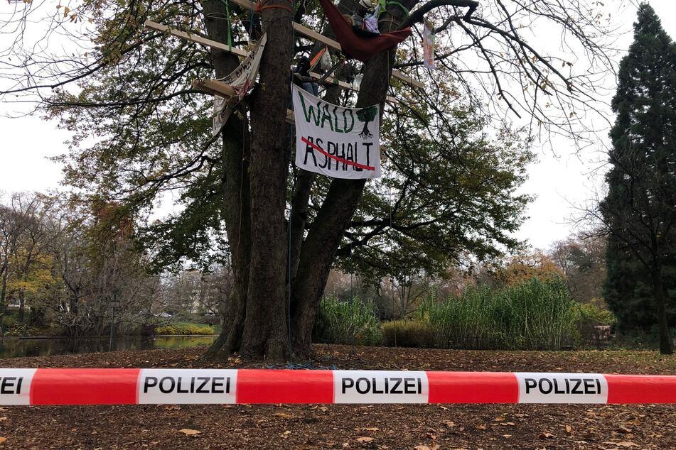 Aktivisten besetzen Baum in Kölner Park: Polizei ist vor Ort