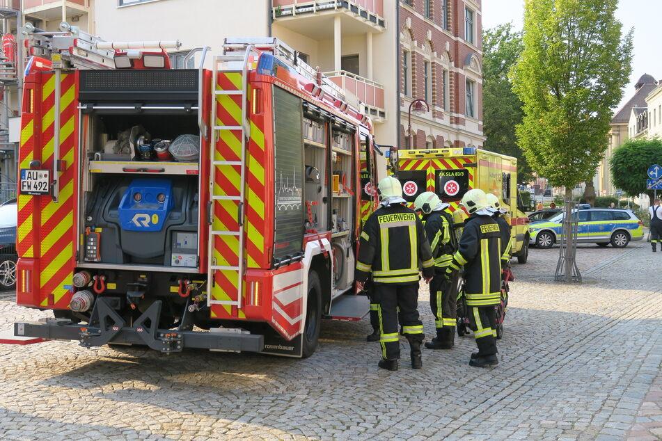 Die Feuerwehr war mit 16 Einsatzkräften vor Ort.