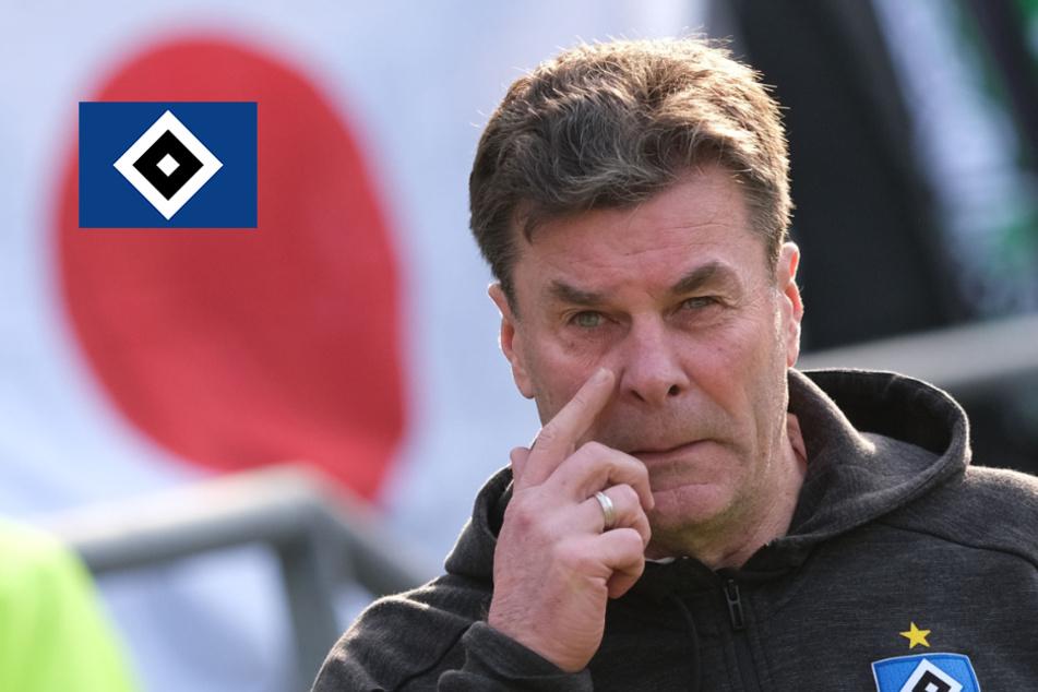 Sportliche Krise? HSV-Trainer Hecking widerspricht Boss Hoffmann