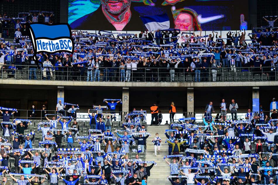 Hertha BSC will vor voller Hütte in die obere Tabellenhälfte stürmen