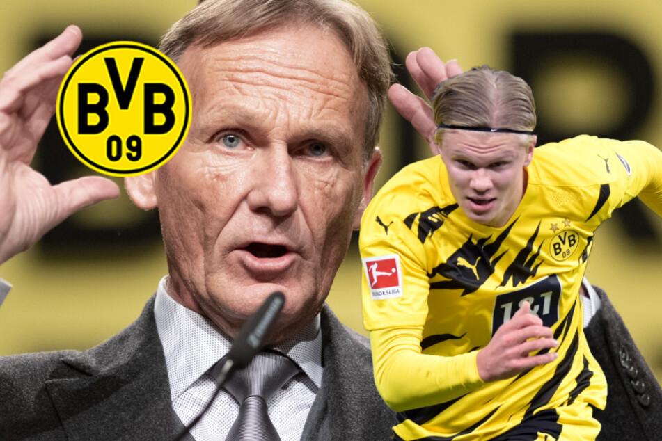 "BVB-Boss Watzke über Haaland-Wechsel: ""Würde es wie Lewandowski machen"""