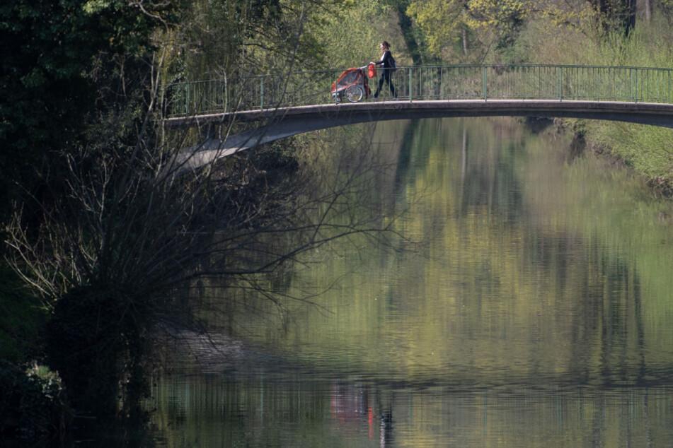 Männer verspotten Hund von Halter und werfen das Tier in den Fluss