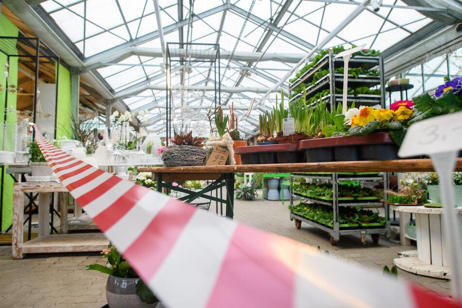 """Auch geschlossene Gärtnereien können ab jetzt einen """"Click & Collect""""-Service anbieten, so beispielsweise auch Rieckhoff Floristik und Gartenbau in Rögatz in Sachsen-Anhalt."""