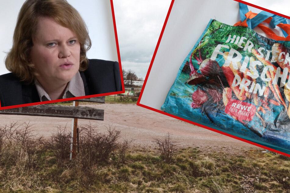 """Baby-Leiche in REWE-Tüte entsorgt: Laut Kriminologin ein """"häufiges Phänomen"""""""