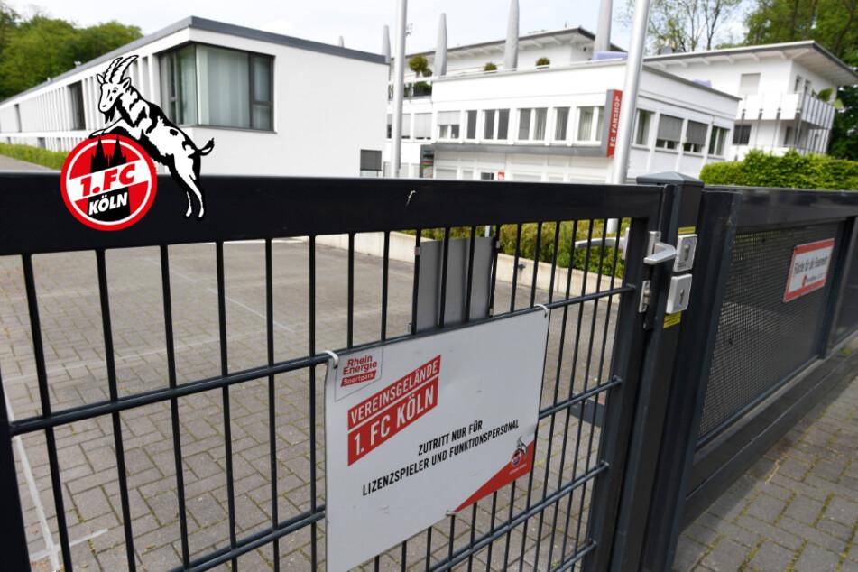 Rat der Stadt: Gleueler Wiesen können für den 1. FC Köln platt gemacht werden