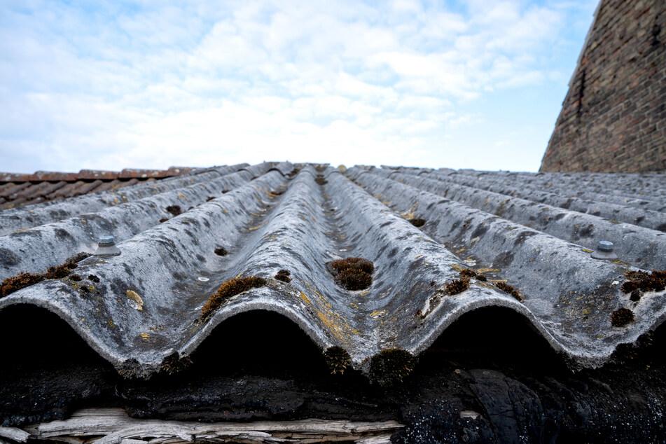 Dreist! Unbekannte entsorgen eine Tonne Asbest mitten im Wald