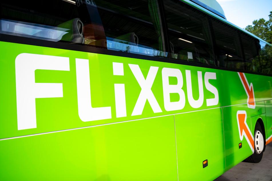 Mit dem FlixBus zur Schule? Busunternehmen will in Corona-Zeiten aushelfen