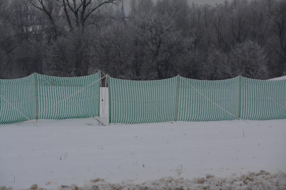 Schneefangzäune wie dieser an der Mölkauer Straße verhindern Verwehungen.