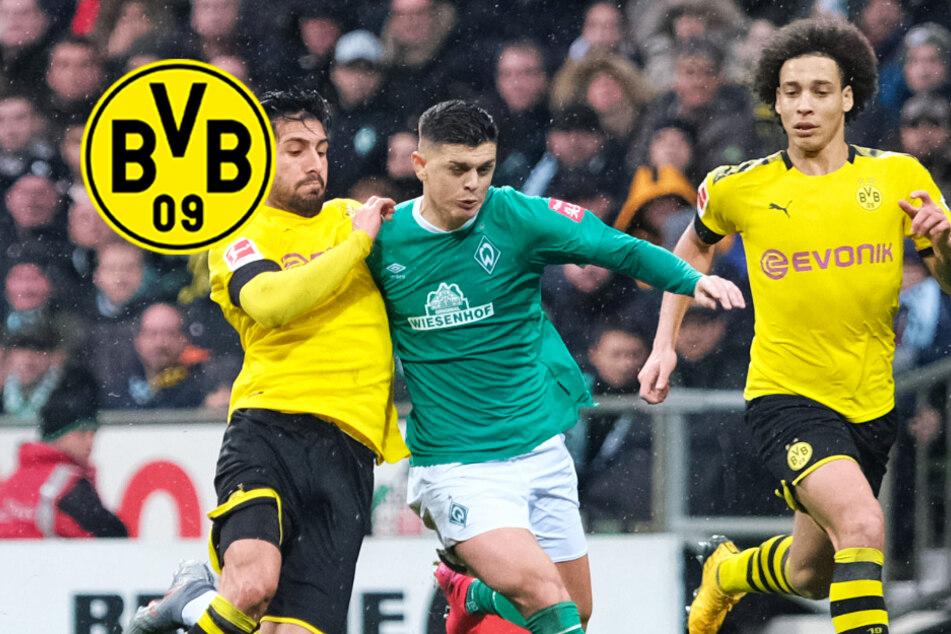 BVB muss im Revierderby gegen Schalke auf mehrere Leistungsträger verzichten!