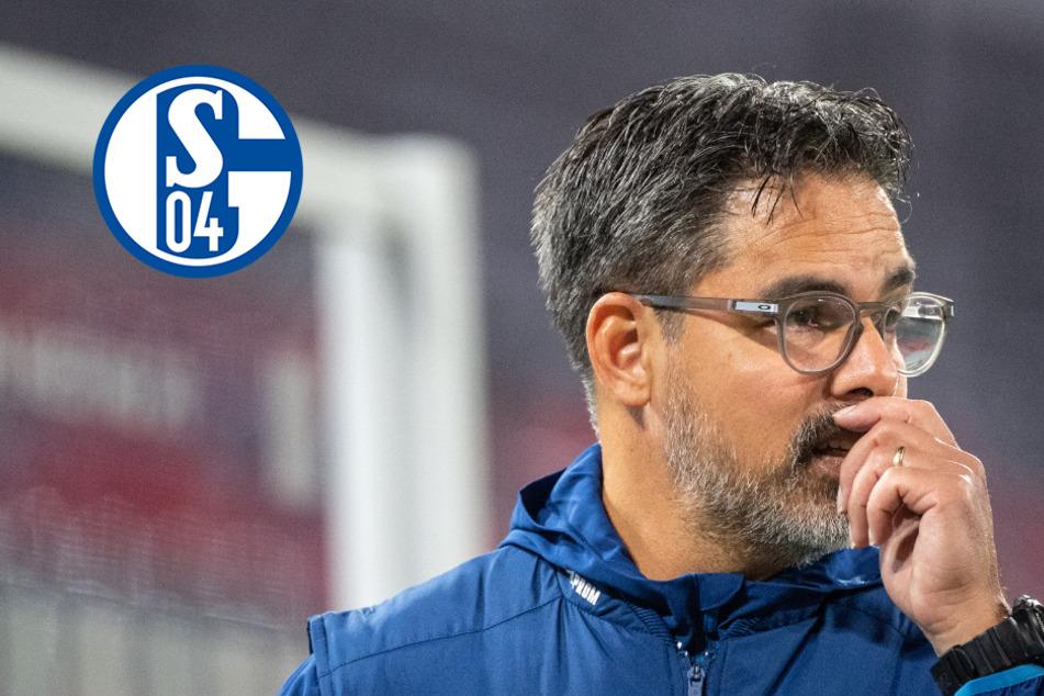 Schalke-Profi positiv auf Coronavirus getestet