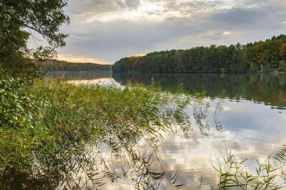 Am Liepnitzsee schoss ein verwirrter Mann um sich. (Symbolbild)