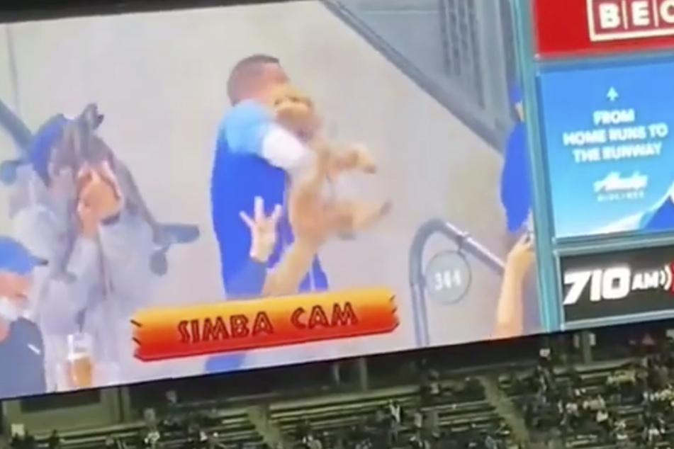 """Die """"Simba Cam"""" hält auf einen Hundebesitzer und seinen Vierbeiner drauf."""