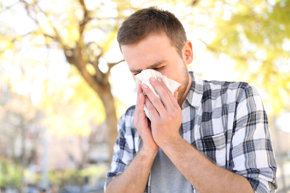Instead of constantly using handkerchiefs, the experts recommend regular nasal rinsing (stock image).