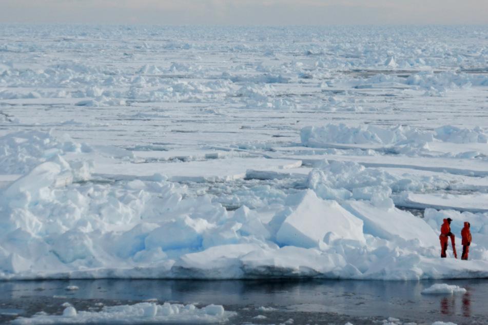 Wissenschaftler stehen im Eis der Arktis.