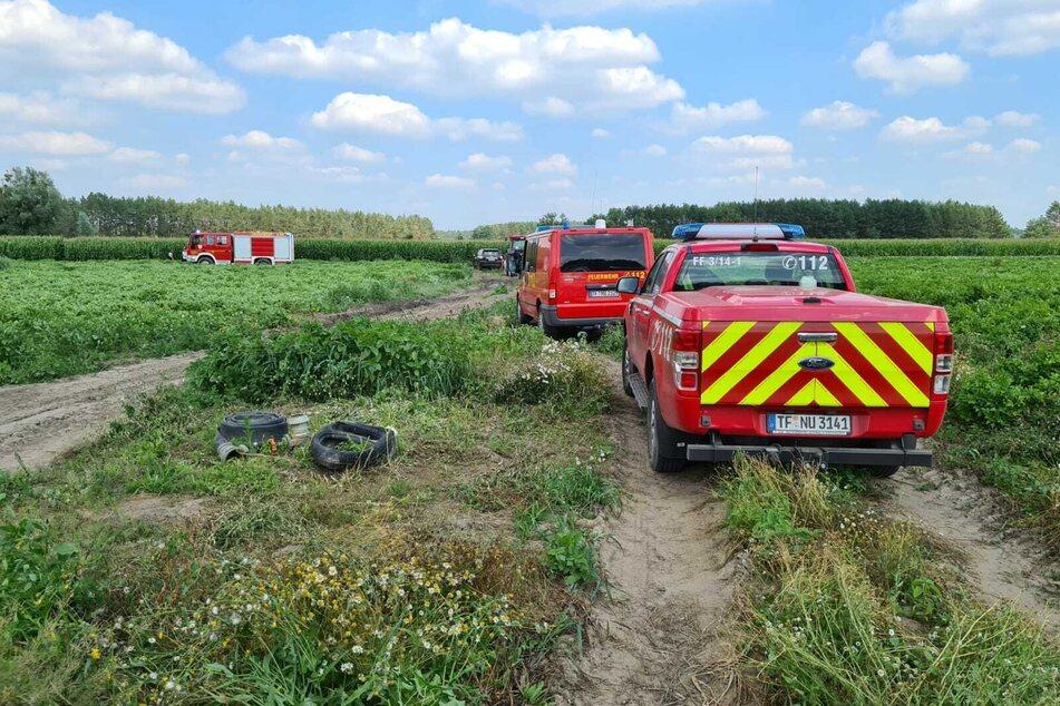 Ein Kleinflugzeug musste am Freitag in einem Maisfeld in Hennickendorf notlanden.